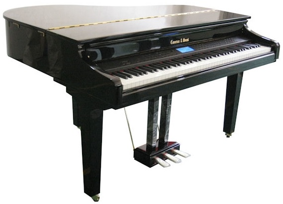 Digital Piano, Digital Pianos