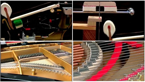 Parts of a Grand Piano?