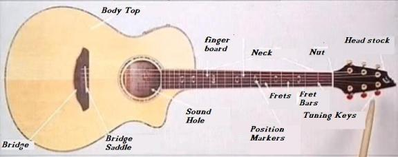 Parts of a    Guitar           Diagram    Showing All    Guitar    Parts   KeytarHQ  Music Gear Reviews