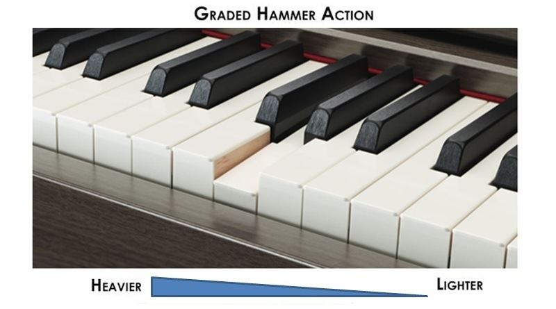 Hammer vs  Graded Hammer Action Keys on Digital Pianos & Keyboards